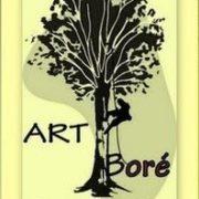 Art Boré Arboriste grimpeur élagueur