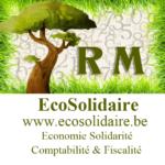 Ecosolidaire Comptables fiscalistes Économie sociale